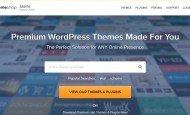 Ücretli WordPress Tema Satış Sitesi